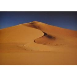 Carte 15 x 10,5 cm Dunes de sable