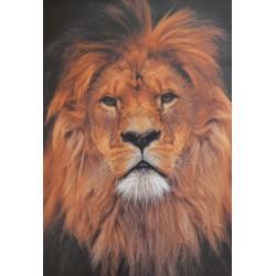 Carte 15 x 10,5 cm Lion
