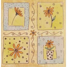 Tampon Daisy Window 100 x...