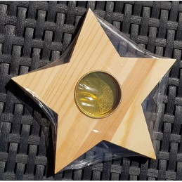 Etoile photophore 15 cm