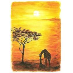 001M Horizons d'Afrique 2