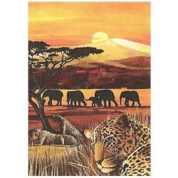 164 Namibie